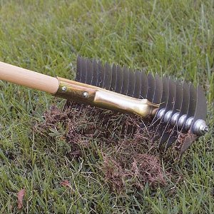 Use crabgrass rake to remove crabgrass infestations in small areas.